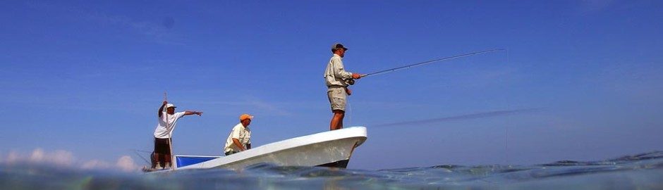 Half Day Fishing: Drop, Spin, Casting or Trolling in Placencia Belize