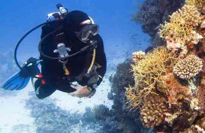 Belize Scuba Diving Featured