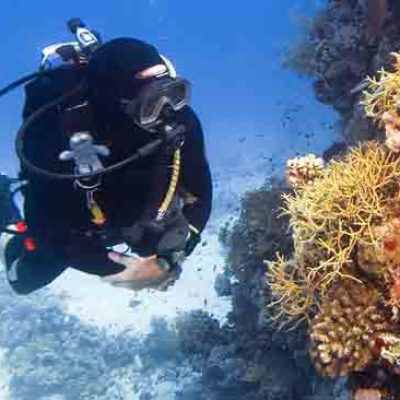 Belize Scuba Diving Featured